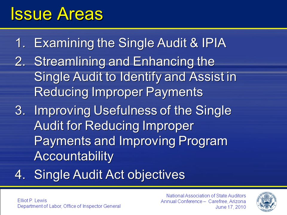 Issue Areas Examining the Single Audit & IPIA