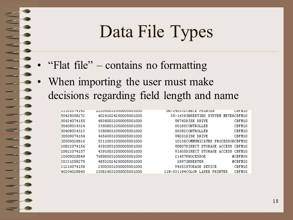 Data File Types Flat file – contains no formatting