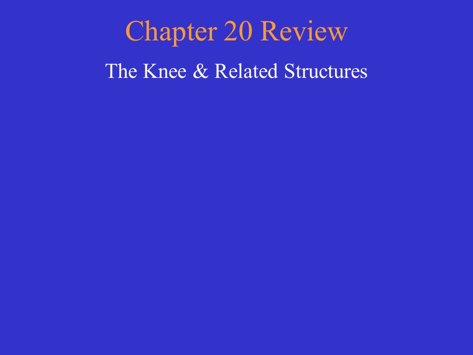 The Knee & Related Structures