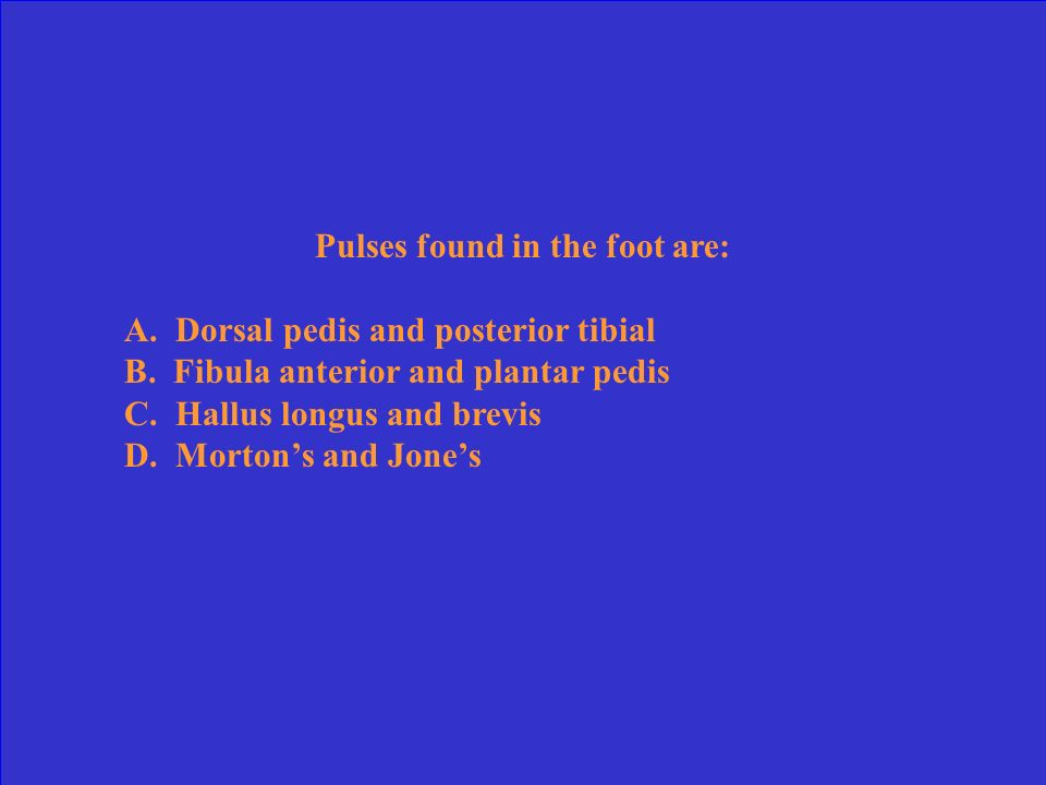 Pulses found in the foot are: