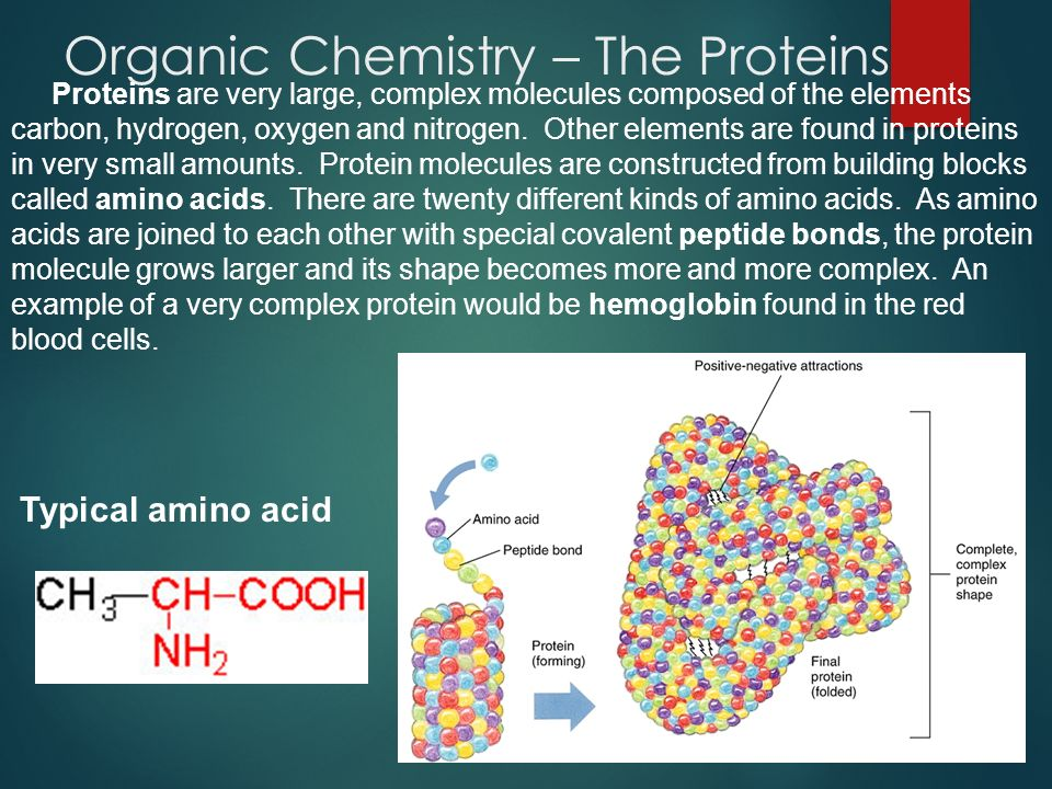 Organic Chemistry – The Proteins