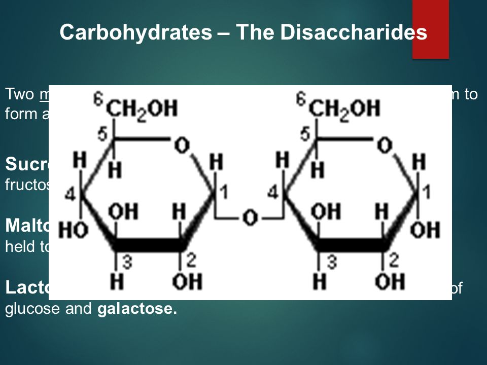 Carbohydrates – The Disaccharides
