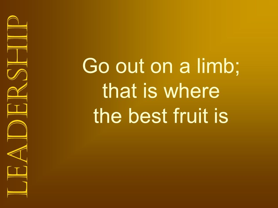 Go out on a limb; that is where the best fruit is