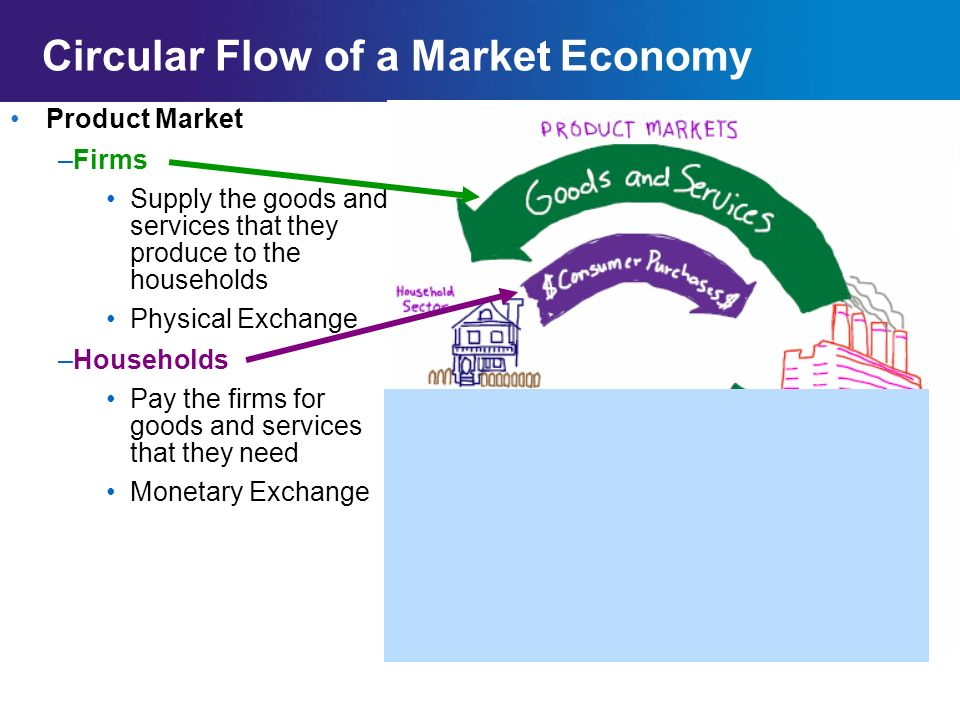 the circular flow of the economy An economy is in equilibrium when the rate of injections = the rate of withdrawals from the circular flow building up the model in this next series of images we build up the circular flow model from just having a domestic sector and then adding in an external sector (exports and imports) before including the financial sector which channels.