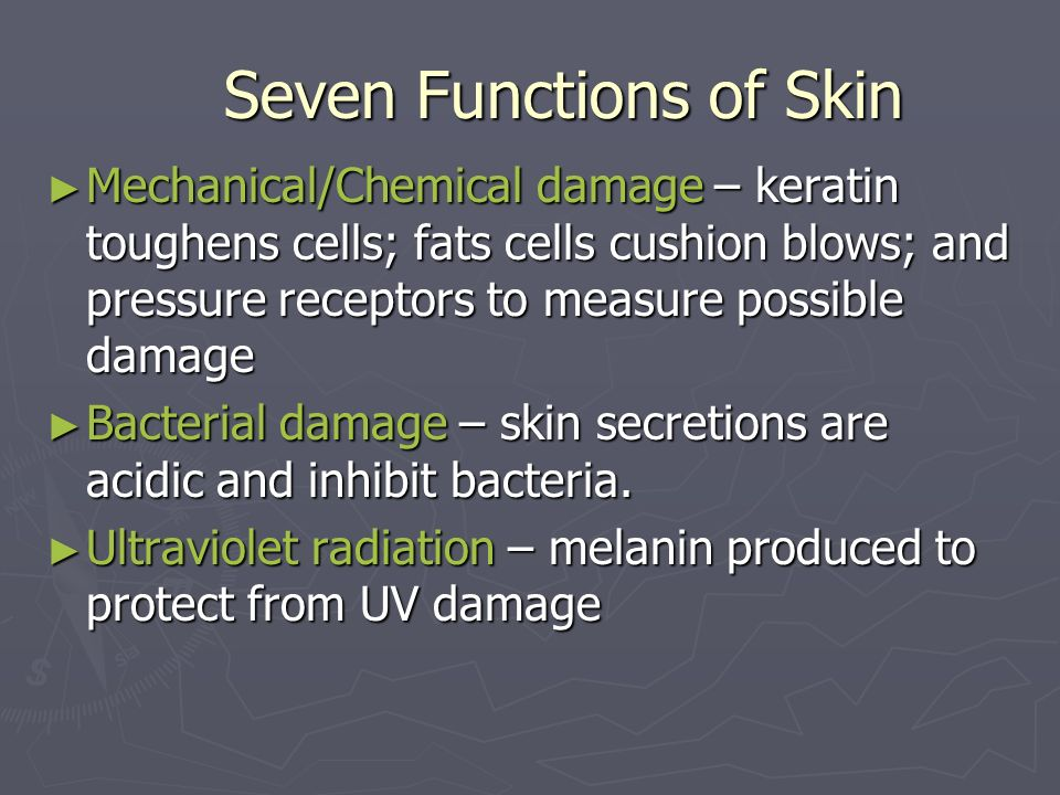 Seven Functions of Skin