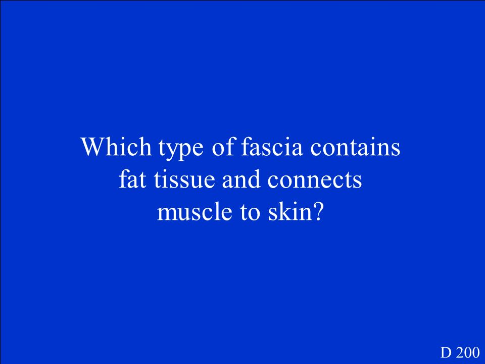 Which type of fascia contains fat tissue and connects muscle to skin
