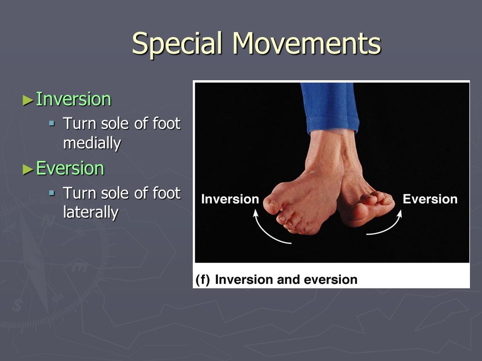 Special Movements Inversion Eversion Turn sole of foot medially