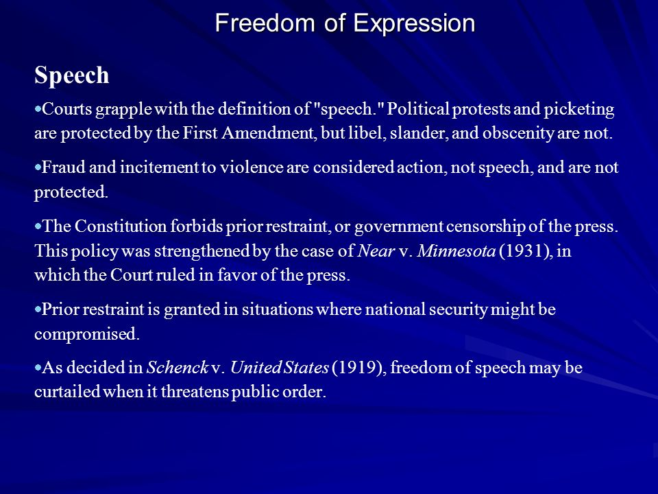 Freedom of Expression Speech