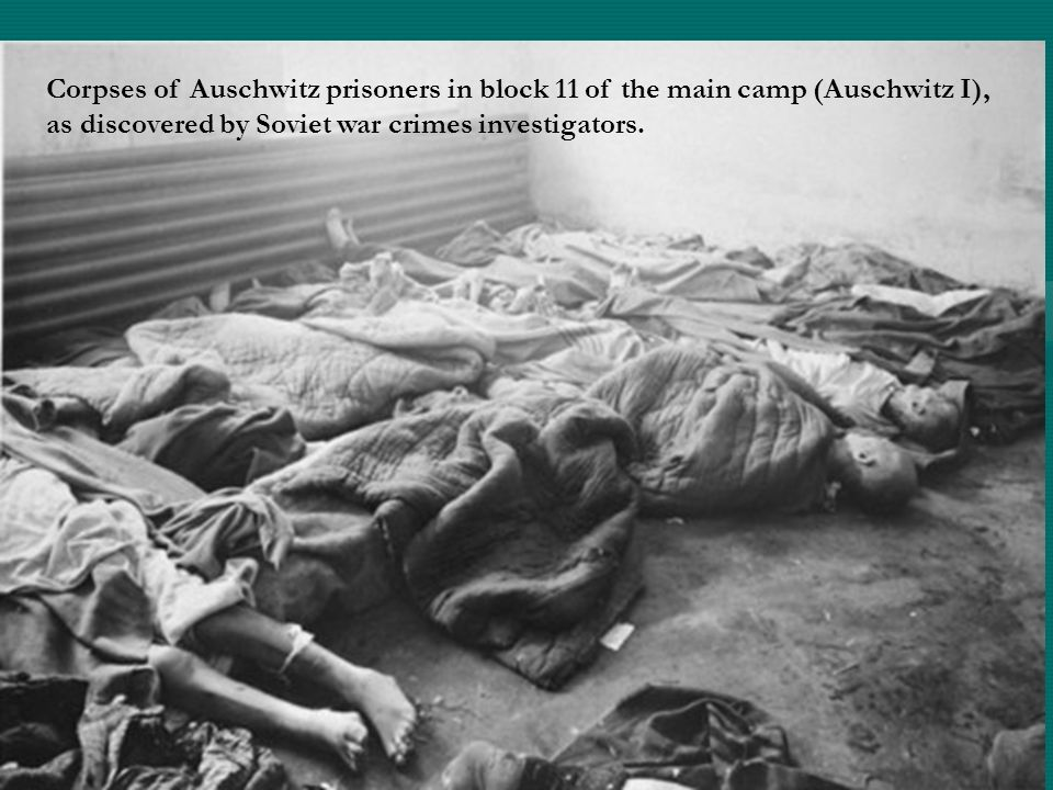 Corpses of Auschwitz prisoners in block 11 of the main camp (Auschwitz I), as discovered by Soviet war crimes investigators.