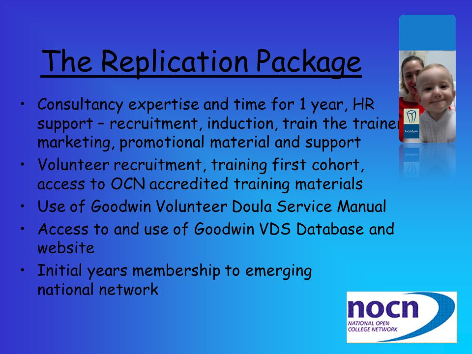 The Replication Package
