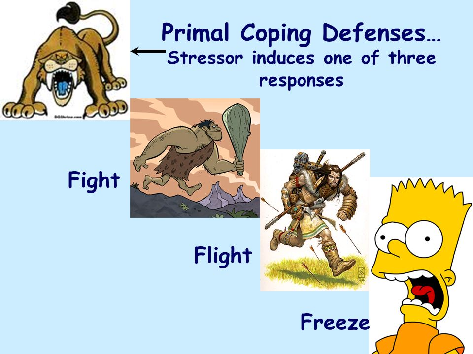 Primal Coping Defenses… Stressor induces one of three responses