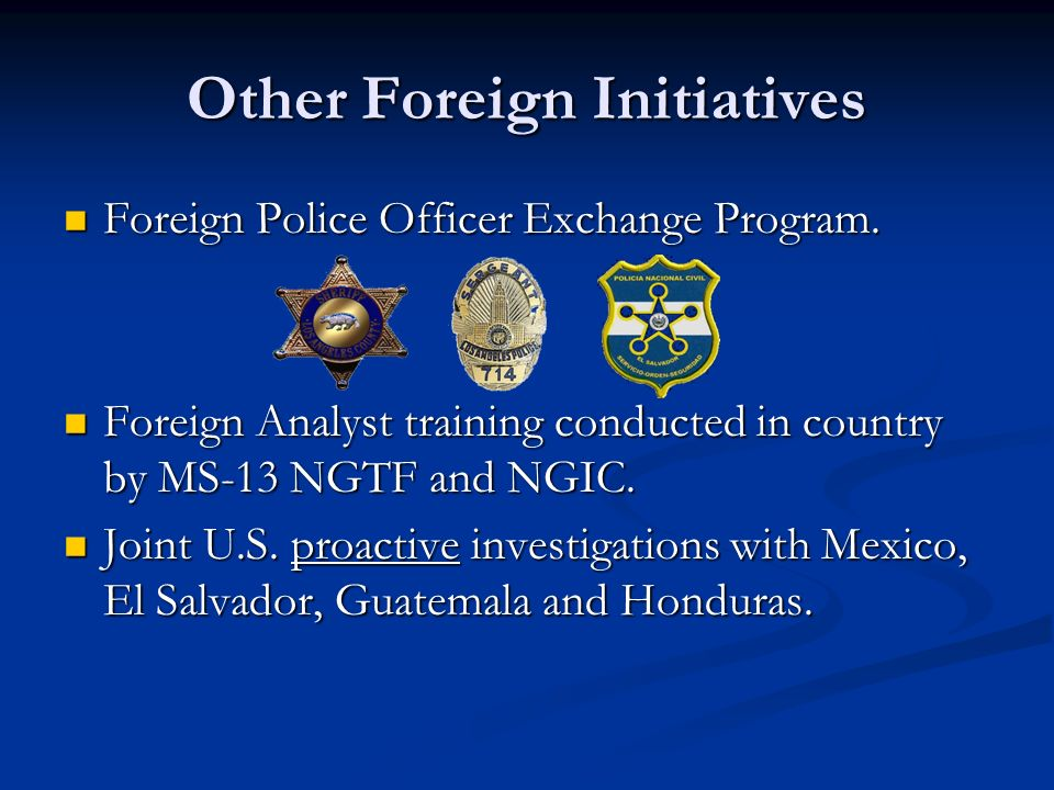 Other Foreign Initiatives