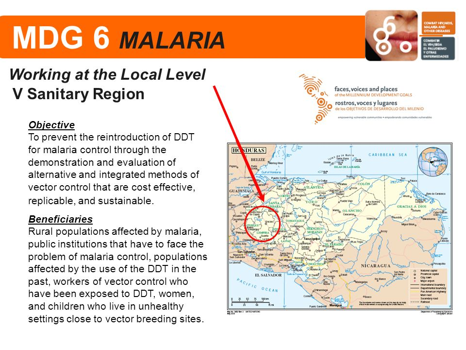 MDG 6 MALARIA Working at the Local Level V Sanitary Region Objective