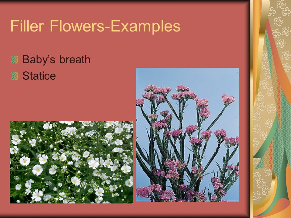 Filler Flowers-Examples