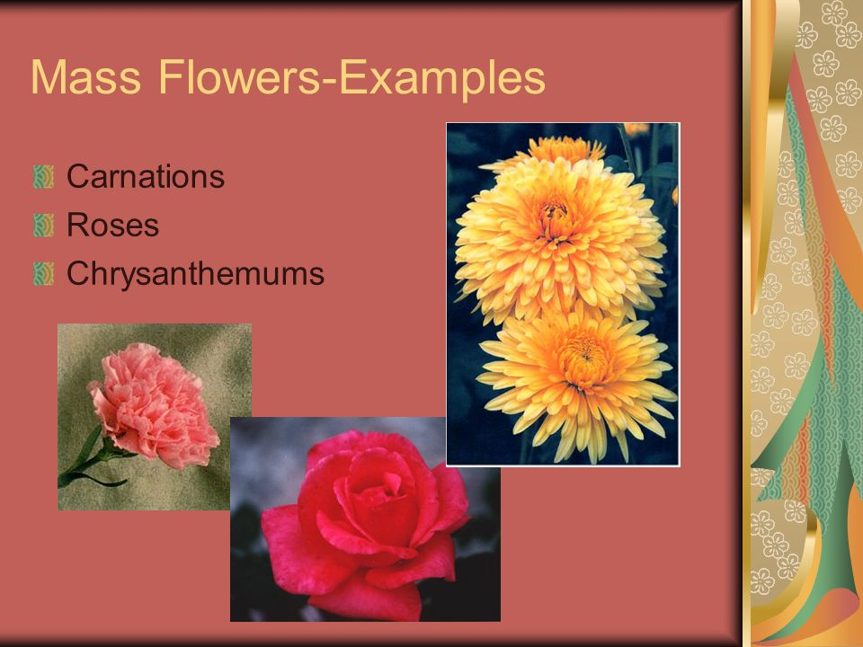 Mass Flowers-Examples