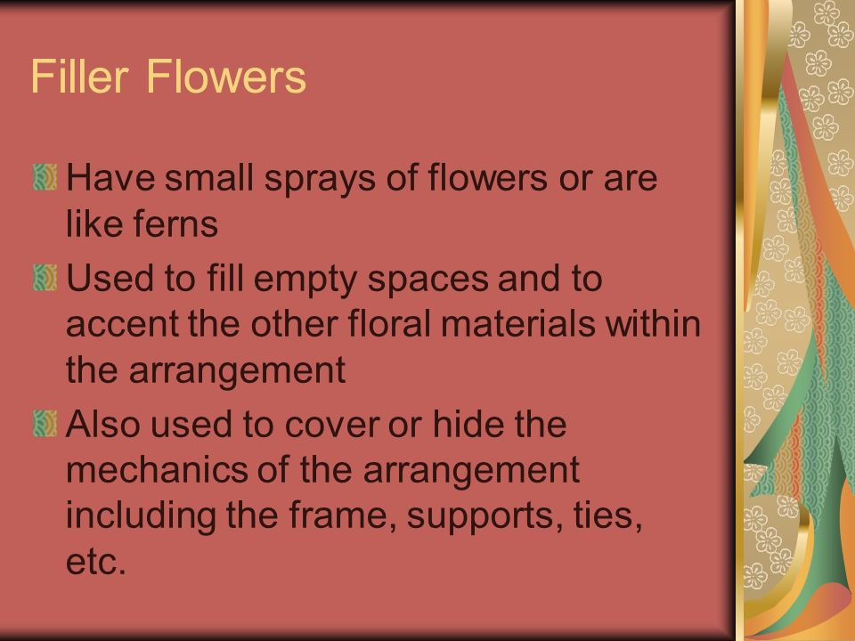 Filler Flowers Have small sprays of flowers or are like ferns