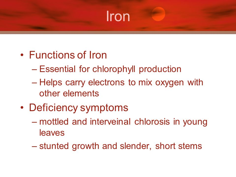 Iron Functions of Iron Deficiency symptoms