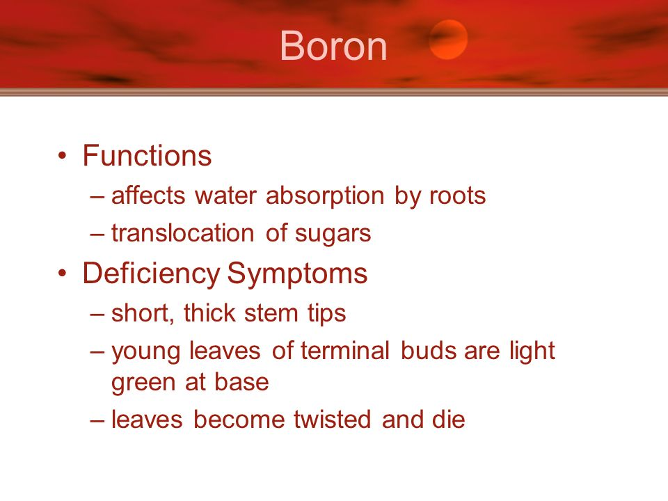 Boron Functions Deficiency Symptoms affects water absorption by roots