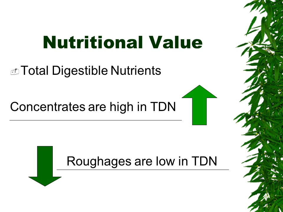 Nutritional Value Total Digestible Nutrients