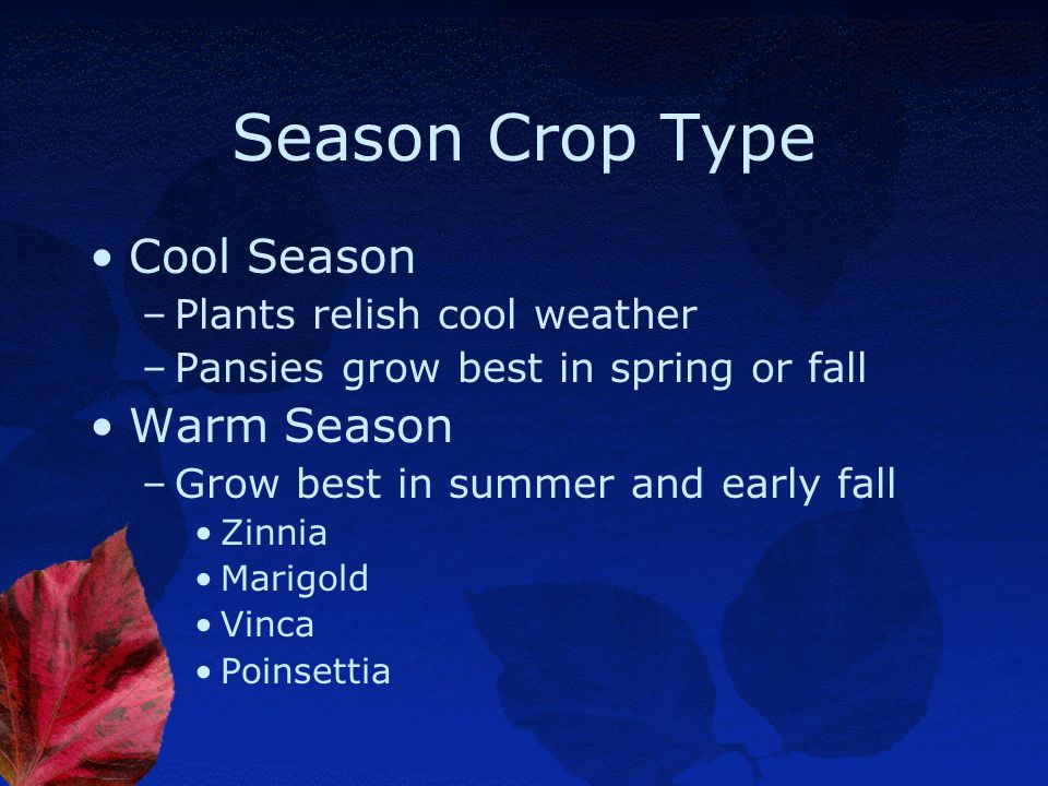 Season Crop Type Cool Season Warm Season Plants relish cool weather