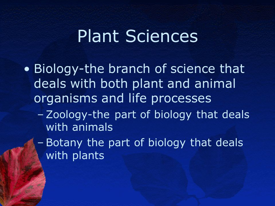 Plant Sciences Biology-the branch of science that deals with both plant and animal organisms and life processes.