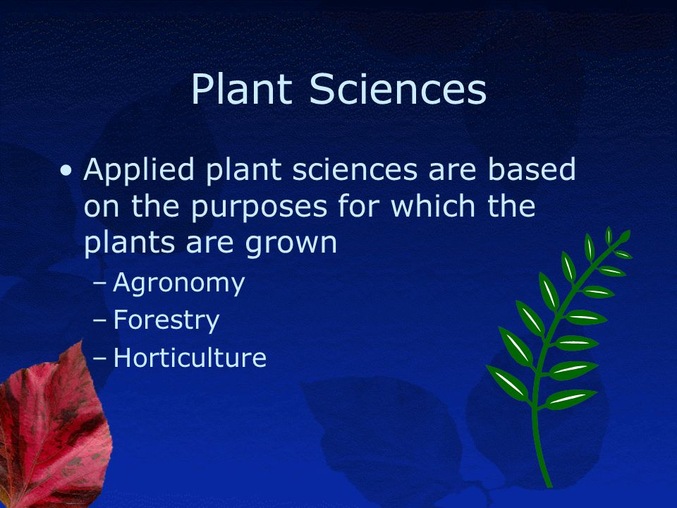 Plant Sciences Applied plant sciences are based on the purposes for which the plants are grown. Agronomy.