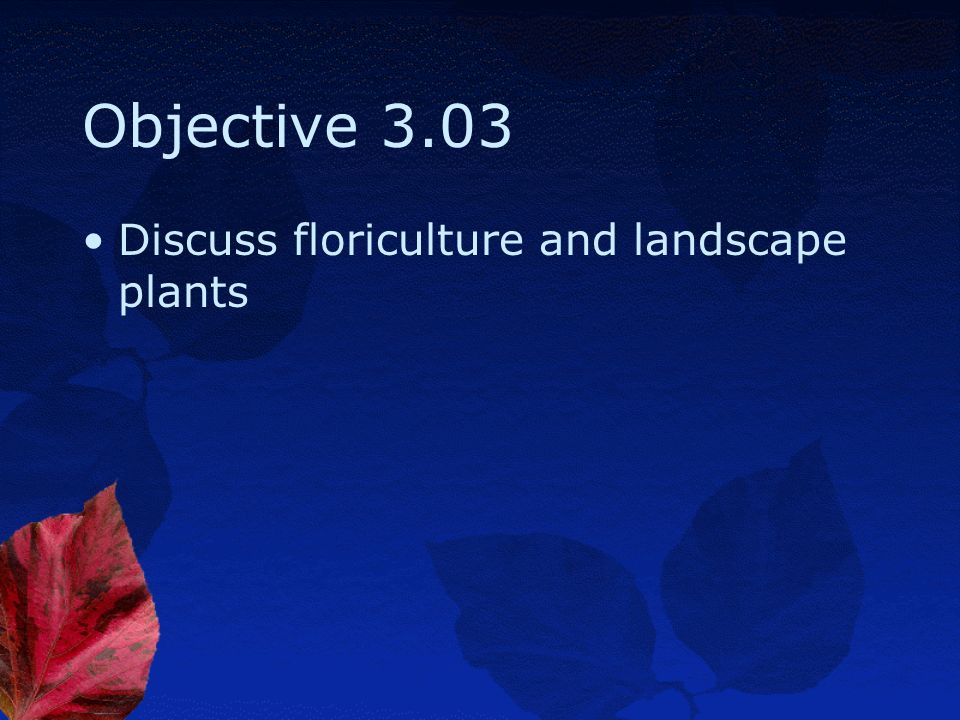 Objective 3.03 Discuss floriculture and landscape plants
