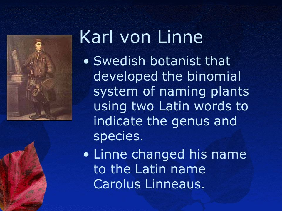 Karl von Linne Swedish botanist that developed the binomial system of naming plants using two Latin words to indicate the genus and species.