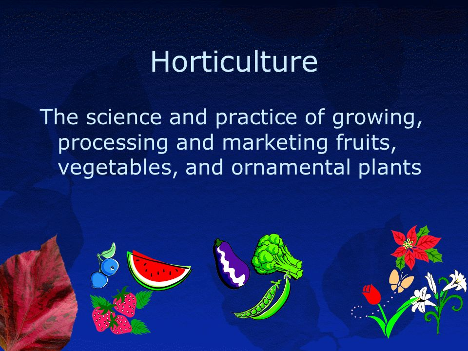 Horticulture The science and practice of growing, processing and marketing fruits, vegetables, and ornamental plants.