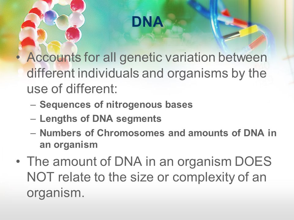 DNA Accounts for all genetic variation between different individuals and organisms by the use of different: