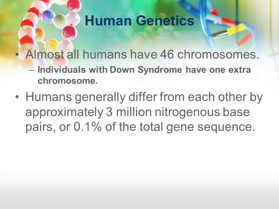 Human Genetics Almost all humans have 46 chromosomes.
