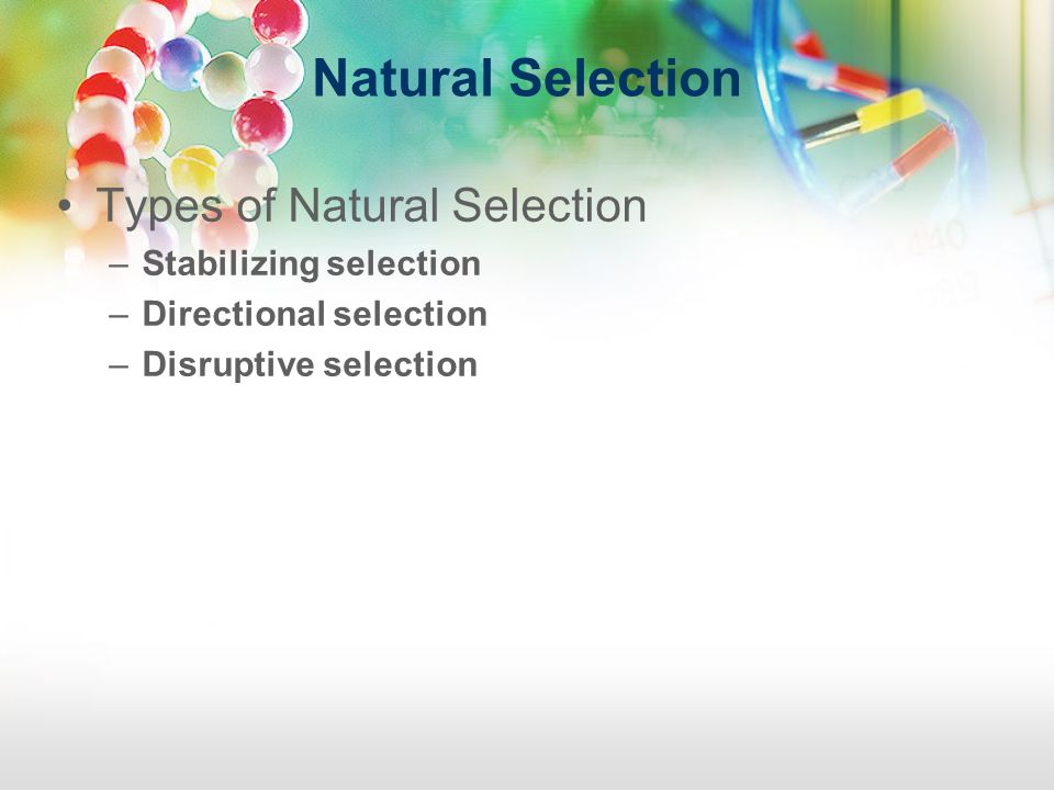 Natural Selection Types of Natural Selection Stabilizing selection