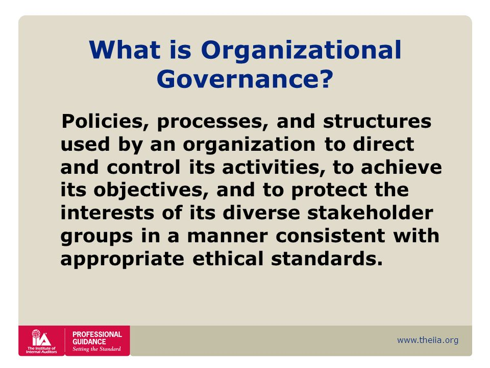 What is Organizational Governance