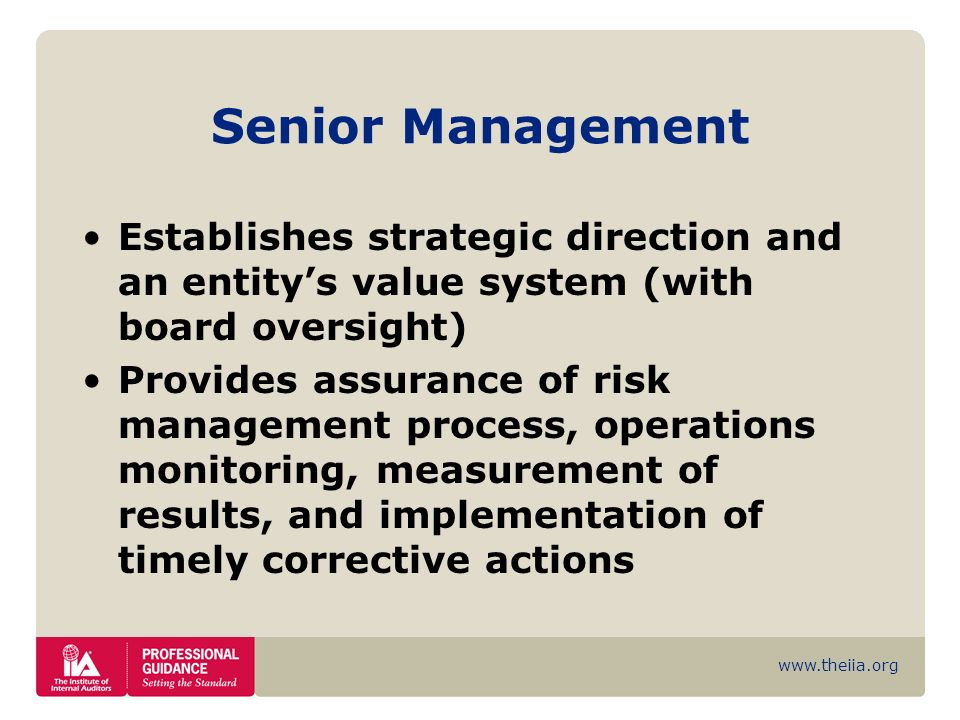 Senior Management Establishes strategic direction and an entity's value system (with board oversight)