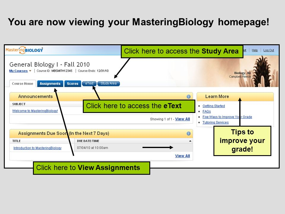 You are now viewing your MasteringBiology homepage!