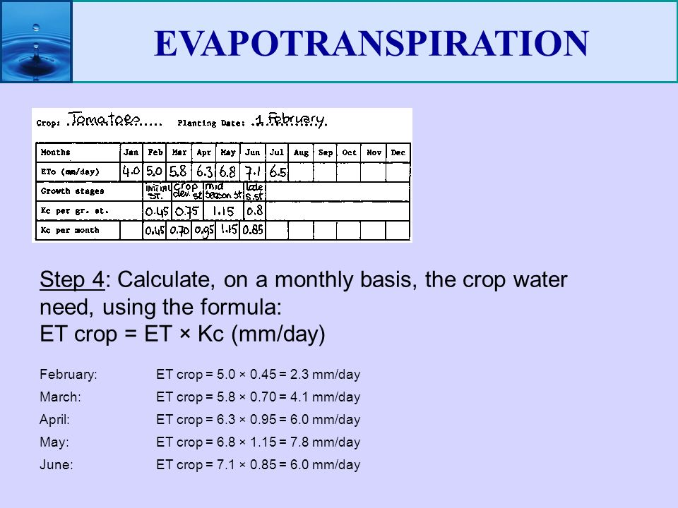 Evapotranspiration. Ppt video online download.