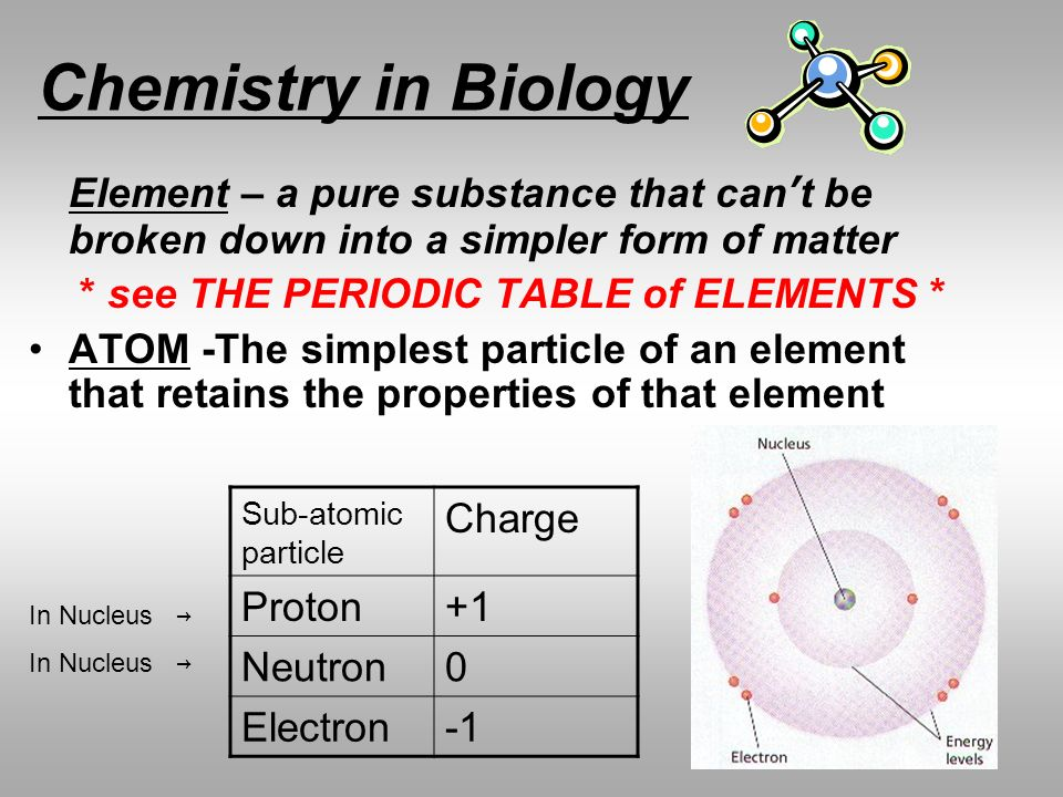 Chemistry in Biology * see THE PERIODIC TABLE of ELEMENTS *