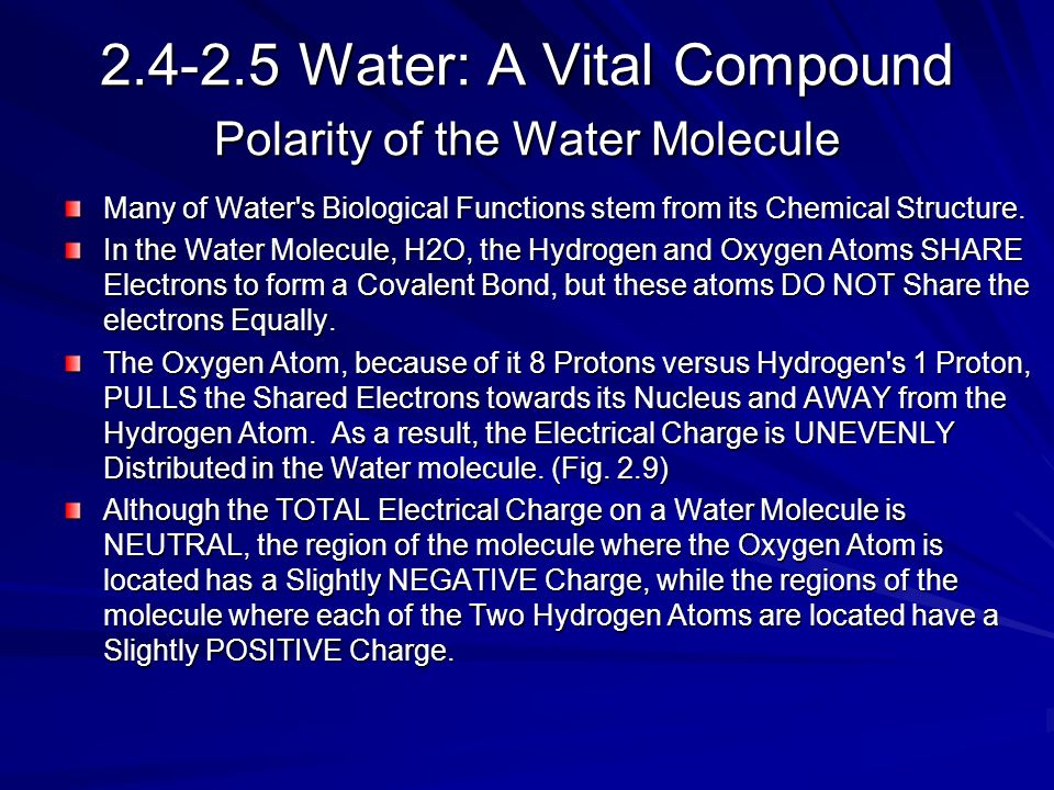 Water: A Vital Compound Polarity of the Water Molecule