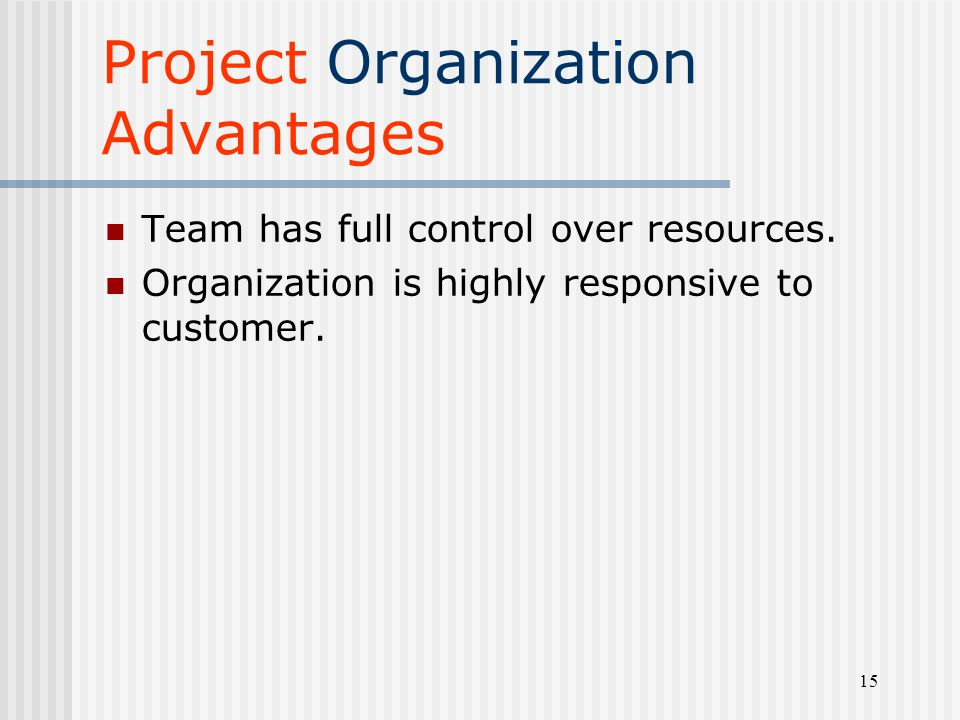 project organizational structure advantages and disadvantages pdf