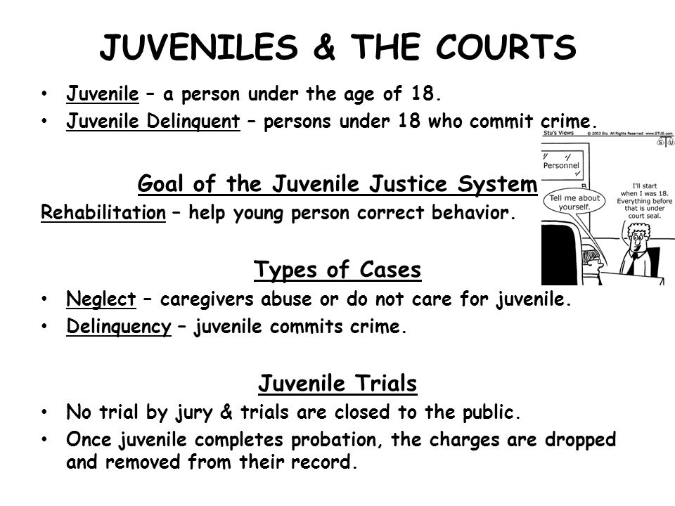 Goal of the Juvenile Justice System