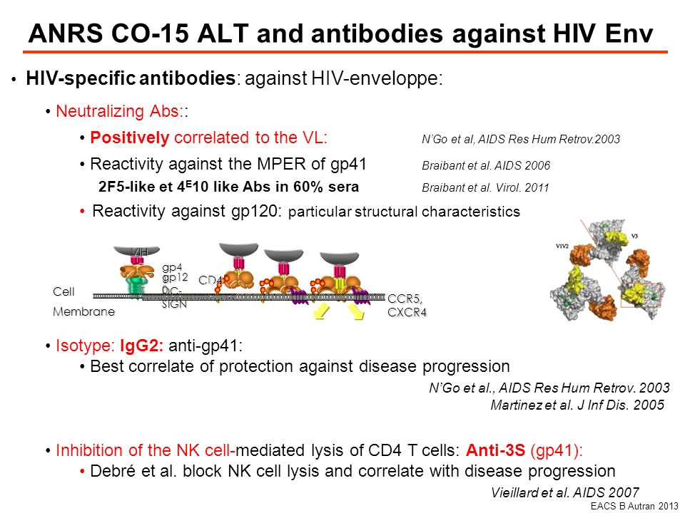 ANRS CO-15 ALT and antibodies against HIV Env