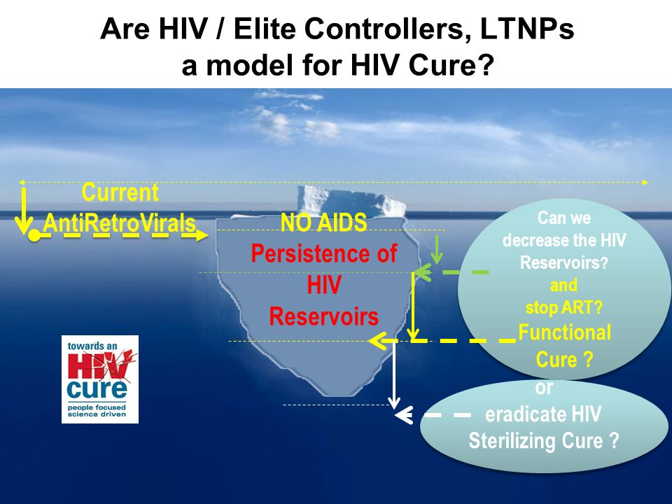 Are HIV / Elite Controllers, LTNPs a model for HIV Cure