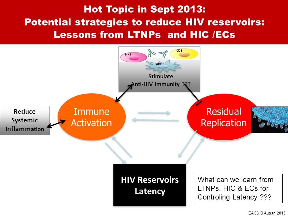 Potential strategies to reduce HIV reservoirs: