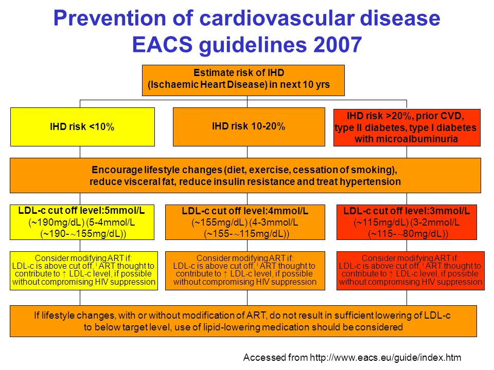 Prevention of cardiovascular disease EACS guidelines 2007