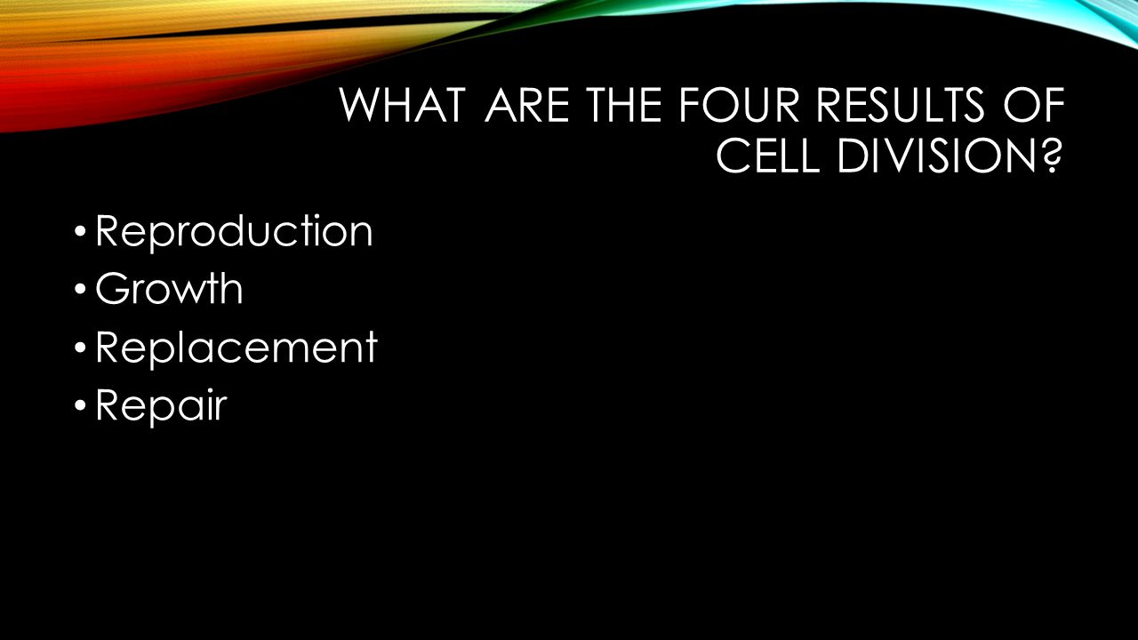 What are the four results of cell division