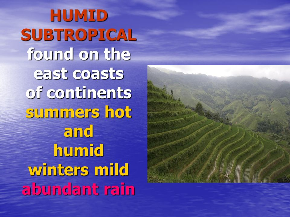 HUMID SUBTROPICAL found on the east coasts of continents summers hot and humid winters mild abundant rain