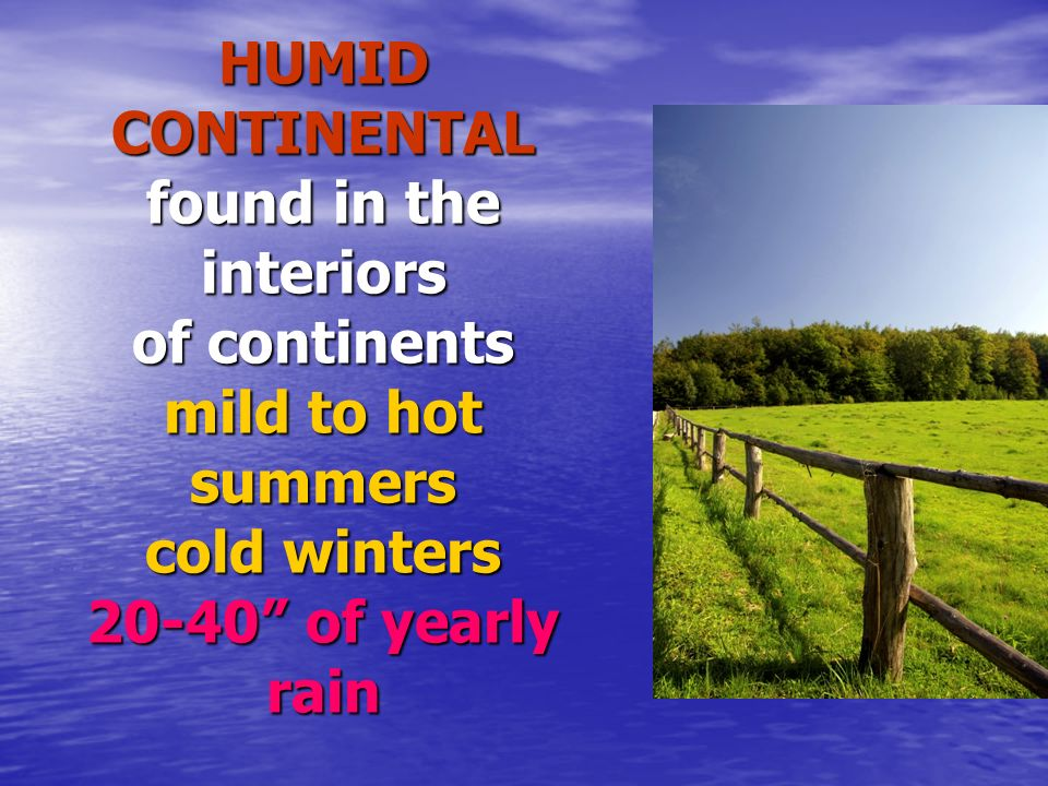 HUMID CONTINENTAL found in the interiors of continents mild to hot summers cold winters of yearly rain