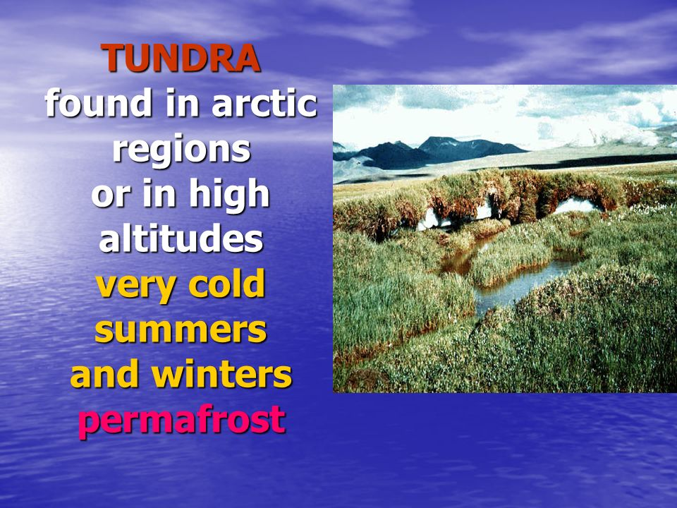 TUNDRA found in arctic regions or in high altitudes very cold summers and winters permafrost
