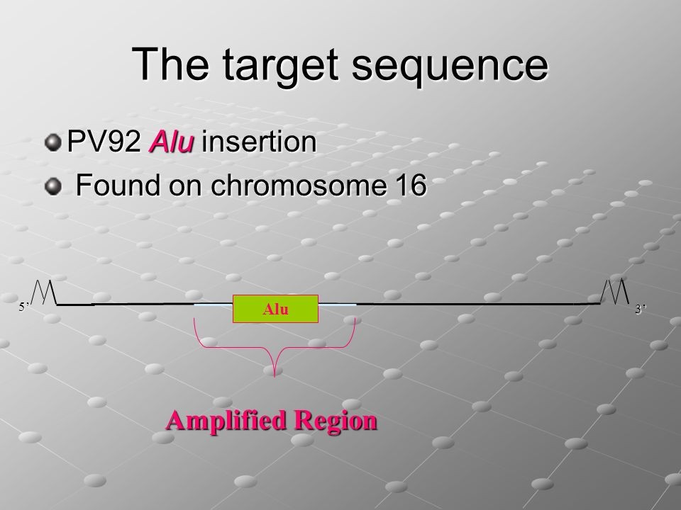 The target sequence PV92 Alu insertion Found on chromosome 16