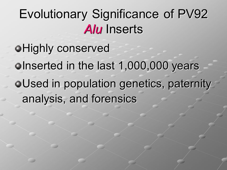 Evolutionary Significance of PV92 Alu Inserts
